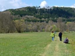 Wanderweg zum Schachblumenfest in Obersinn