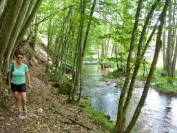 Wanderpfad entlang der Schondra