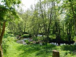 Naturschutzgebiet Schondratal zwischen Heiligkreuz und Gräfendorf
