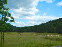 Naturschutzgebiet Schondratal