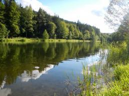 Natur pur im Sindersbachtal