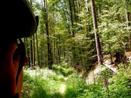 Mountainbiken im Spessart