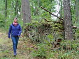 Wandern durch den Spessartwald bei Gemünden