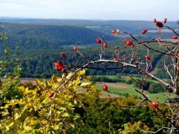 Oberhalb Morlesau: Ausblick über Saaletal und Spessart