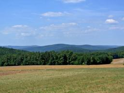 Landschaft erleben