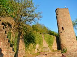 Die Ruine Scherenburg von innen