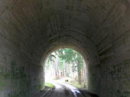 Vergessene Autobahn im Spessart