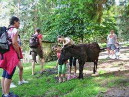 Tierpark im Spessart