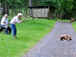 Auch für Senioren lohnt ein Besuch im Tierpark