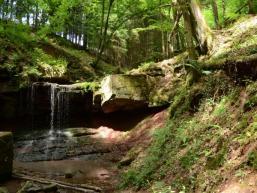 Wildromantisch im Einschnitt des Eidenbachs bei Gräfendorf