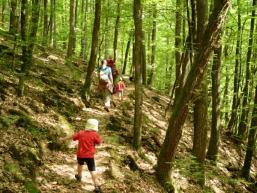 Kindern macht es Spaß auf dem Pfad zu wandern und zu klettern