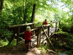 Wandern zum Trettstein, dem Wasserfall im Spessart