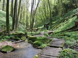 Wanderpfad entlang des Wassers zum Tretstein