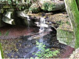 Naturschönheit am Waizenbach