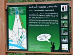 Informationstafel zum Erlebnispfad in Gemünden