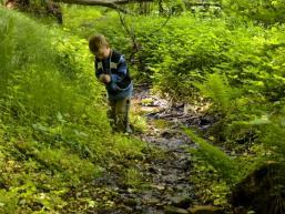 Natur erkunden und hautnah erleben