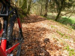Biker auf dem Walderlebnispfad