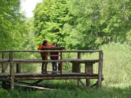 Wald- und Wassererlebnispfad Rieneck