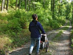 Naturpark Spessart ist eine Wanderregion