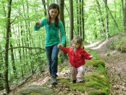 Wald erleben kannst Du im Spessart