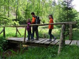 Naturerlebnis Fließenbachtal