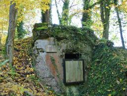 Wasserhausruine am Fellenberg Rieneck