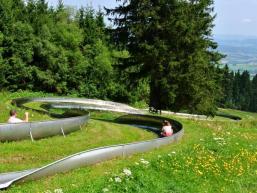 Sommerrodelbahn Wasserkuppe