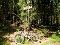 Orientierung im Spessartwald