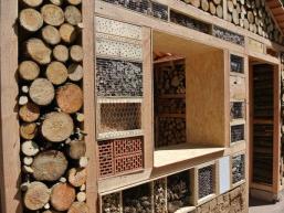 Designzimmer und Wohnkomfort für Insekten aller Arten